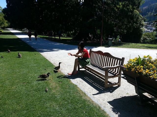 Me feeding the ducks at Queenstown botanical gardens
